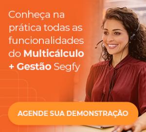 demo Segfy